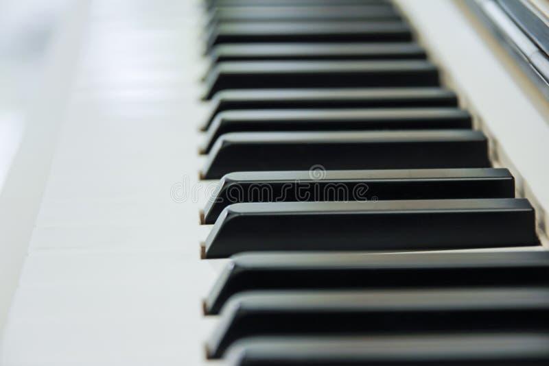 Конец-вверх клавиатуры рояля центризовал на Ab с множеством белого sp стоковое фото rf