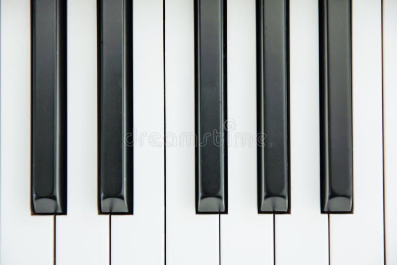 Конец-вверх клавиатуры рояля центризовал на Ab с множеством белого sp стоковые фото