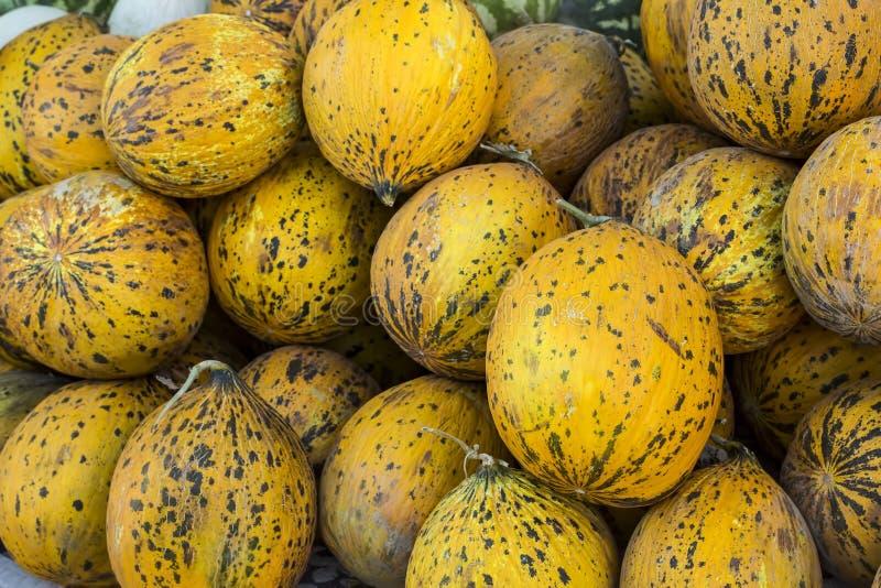 Конец-вверх много дынь Ферма земледелия рынка подноса лета вполне органических плодов Здоровая еда стоковое фото