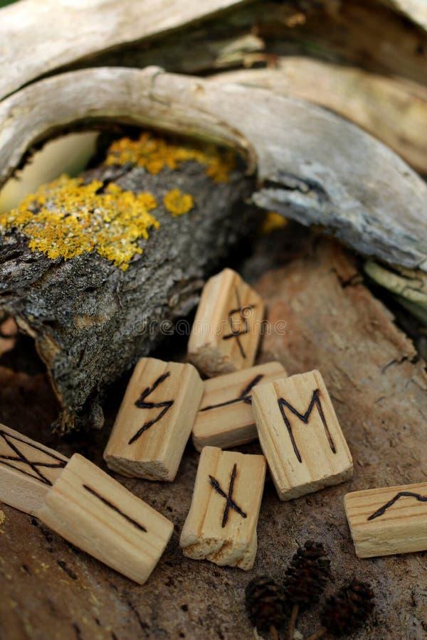 Конец-вверх на деревянном rune Nautis, которое лежит на сухой коре дерева Около другого runam, на коре желтый мох стоковые фото