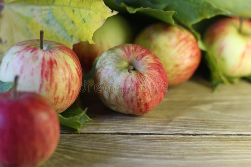 Конец-вверх нескольких яблок зрелый красный на коричневом цвете деревянного стола стоковое фото