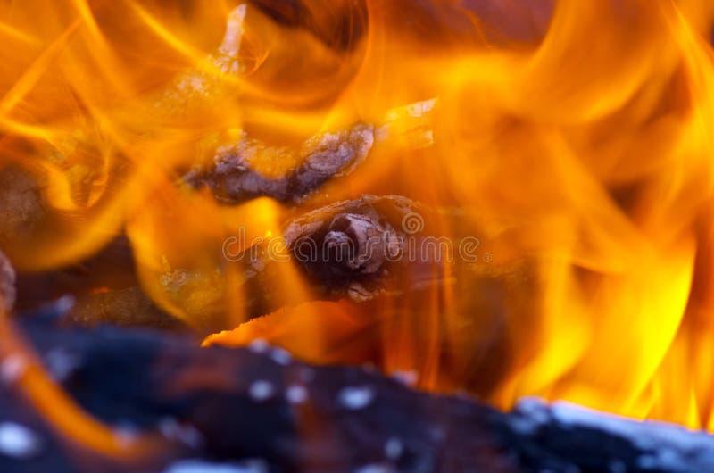Конец-вверх огня стоковое изображение