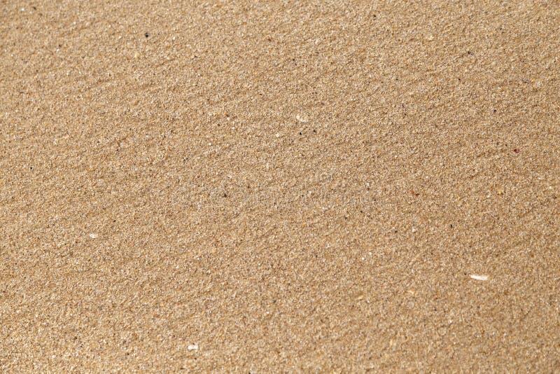 Конец-вверх песка на морском побережье стоковое фото