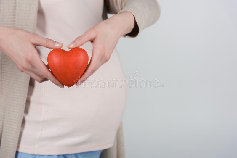 конец-вверх, подрезанное изображение живота беременной женщины и сердце в руках стоковые изображения
