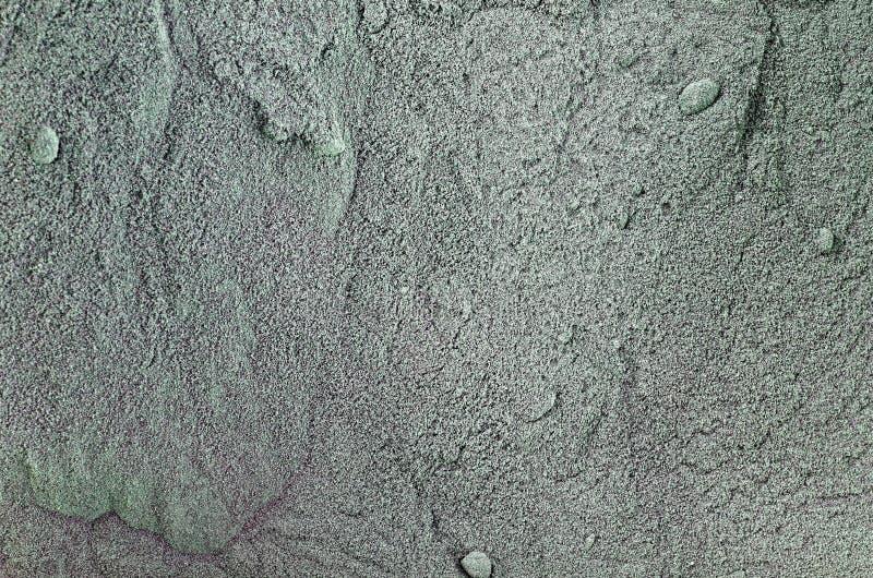 Конец-Вверх порошка Spirulina стоковые изображения rf