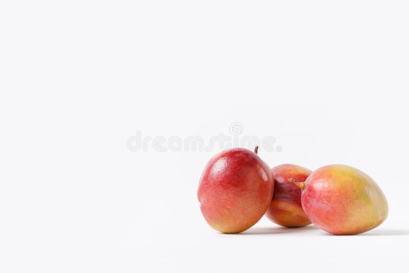 конец вверх по взгляду свежих плодоовощей манго изолированных на белизне стоковое фото