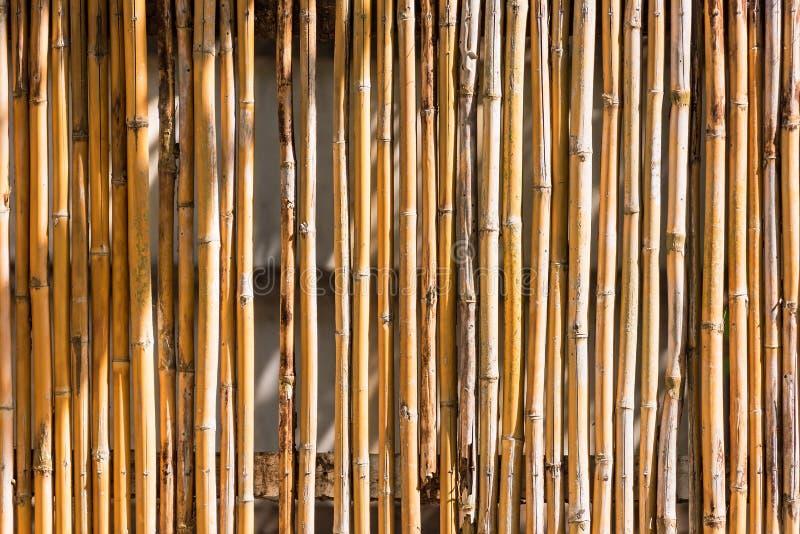 Конец вверх по декоративной старой бамбуковой древесине предпосылки стены загородки стоковое изображение