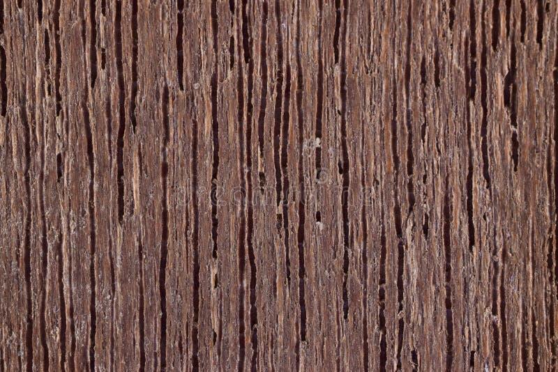 Конец вверх по деревянной картине предпосылки текстуры стоковая фотография