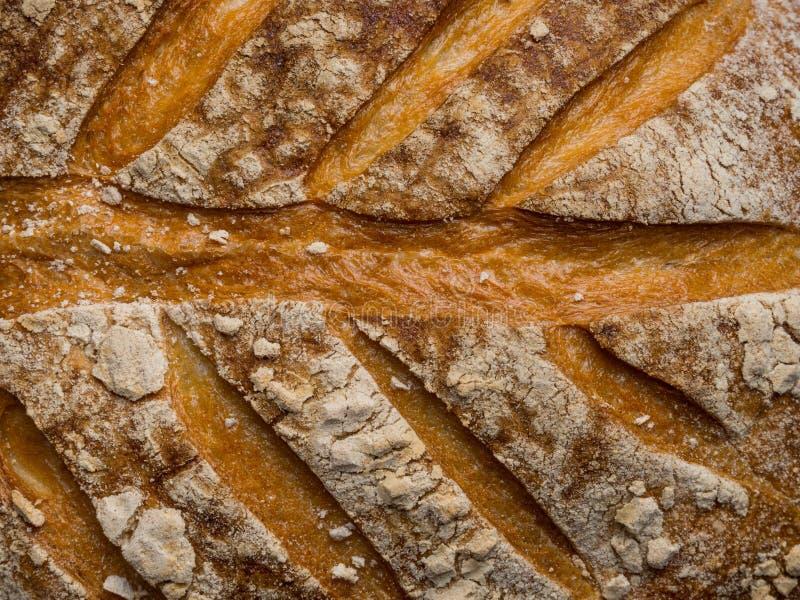Конец вверх по зажаренной в духовке текстуре предпосылки хлеба Фото макроса, конец вверх стоковое фото