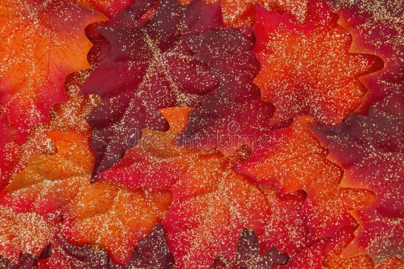 Конец-вверх предпосылки листьев осени яркого блеска стоковое фото rf