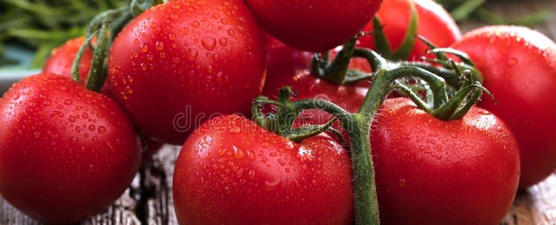 Конец-вверх свежих, зрелых томатов на деревянной предпосылке стоковое изображение rf