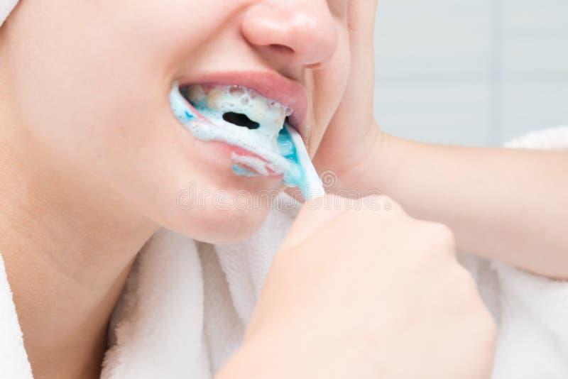 лицо кокошник картинка белка чистит зубы звезда особой