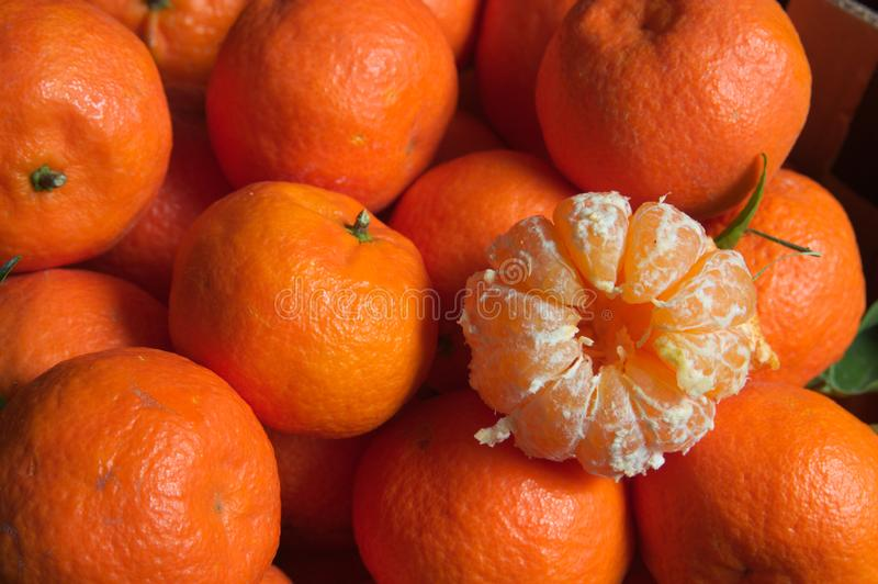 Конец-вверх шелушения много Клементинов или апельсинов стоковая фотография