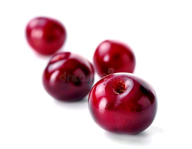 Конец-вверх 4 ягод вишни на белой предпосылке стоковая фотография rf