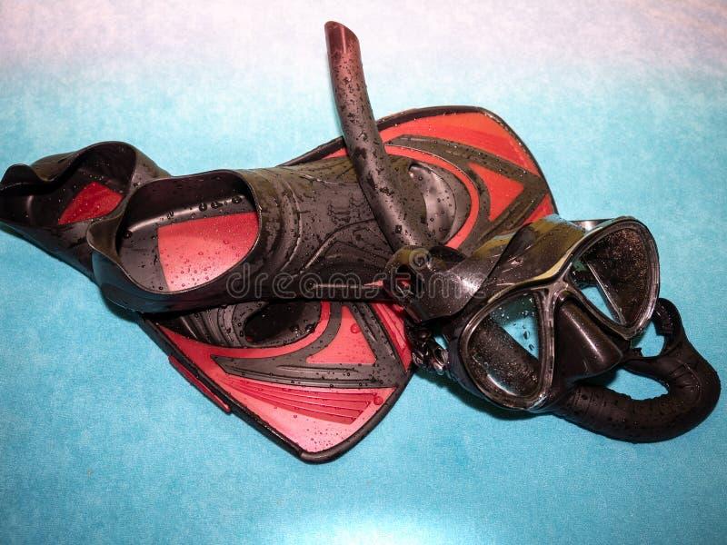 Конец-вверх snorkeling оборудования Изумлённые взгляды и ребра подныривания стоковая фотография