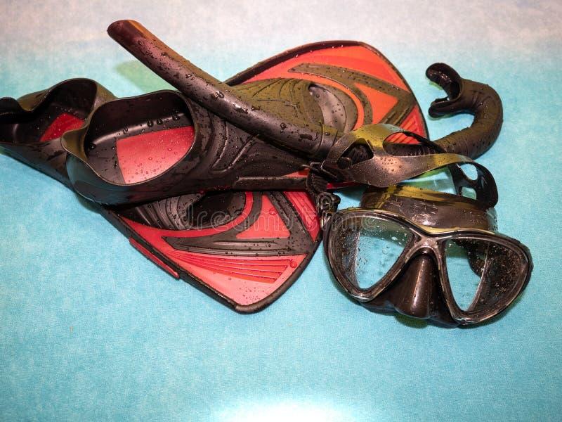 Конец-вверх snorkeling оборудования Изумлённые взгляды и ребра подныривания стоковые изображения rf