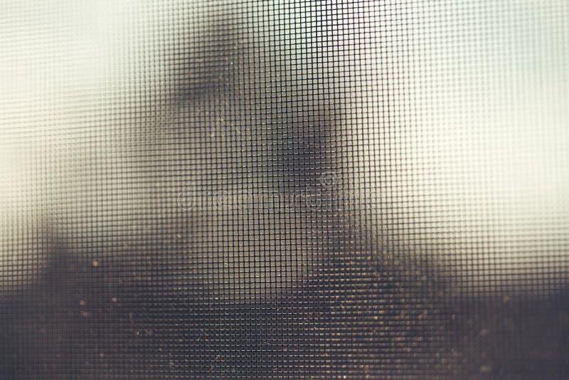 Конец сети окна предохранения от москита вверх по предпосылке стоковая фотография