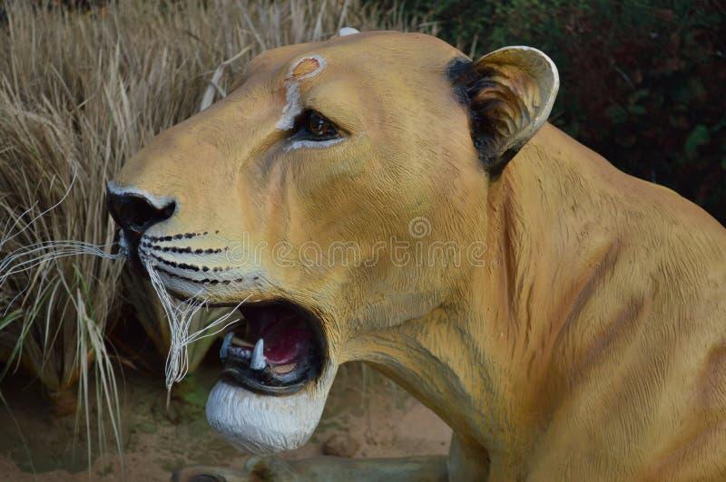 Конец стороны львицы вверх стоковое изображение rf