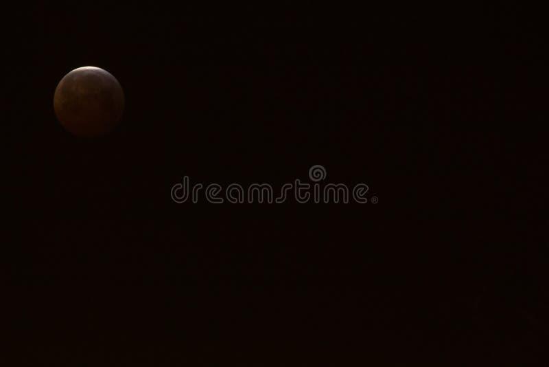 Конец супер луны волка крови в 2019 стоковое изображение rf