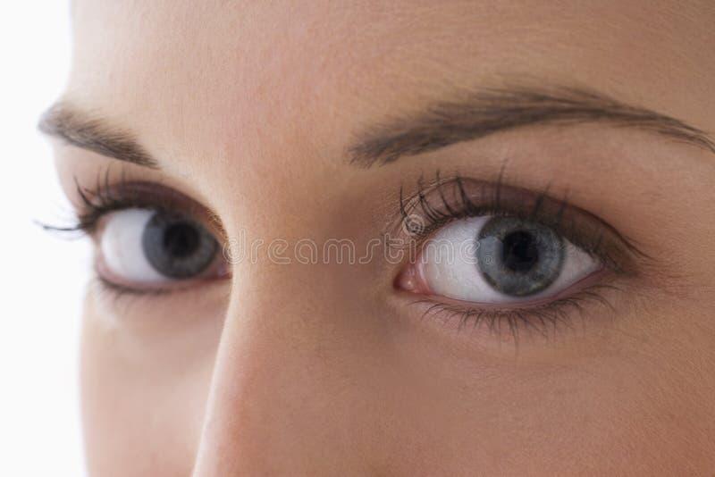 конец eyes s вверх по детенышам женщины стоковые изображения