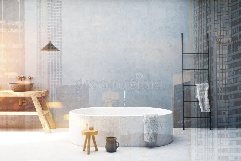 Конкретная ванная комната, круглый ушат, двойной иллюстрация вектора