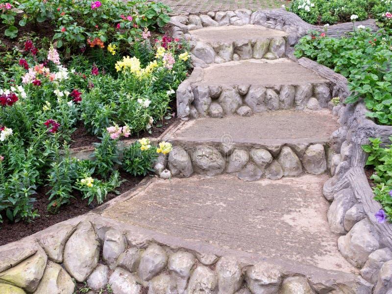 Конкретное каменное staricase вдоль строки цветка стоковое фото