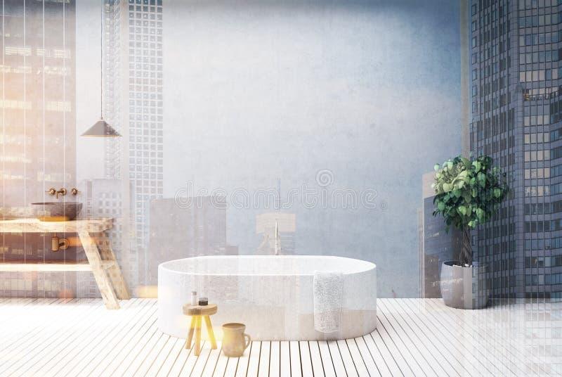 Конкретные тонизированный интерьер, ушат и раковина ванной комнаты иллюстрация штока