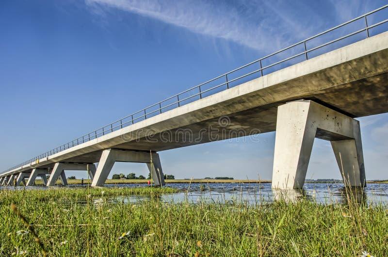 Конкретный взгляд низкого угла моста стоковое изображение