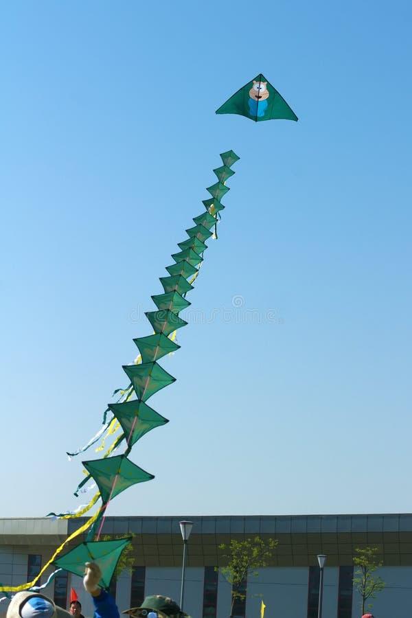 Конкуренция змея стоковое изображение