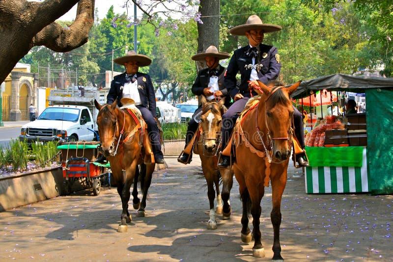 конная полиция Мексики города стоковое фото rf