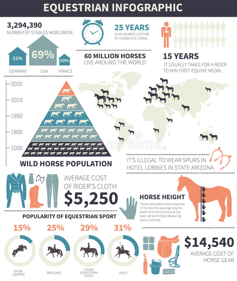 Конноспортивное infographic иллюстрация штока