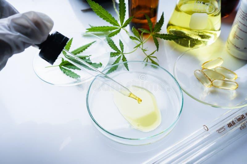 Конопля, марихуана, масло пеньки медицина стоковое изображение