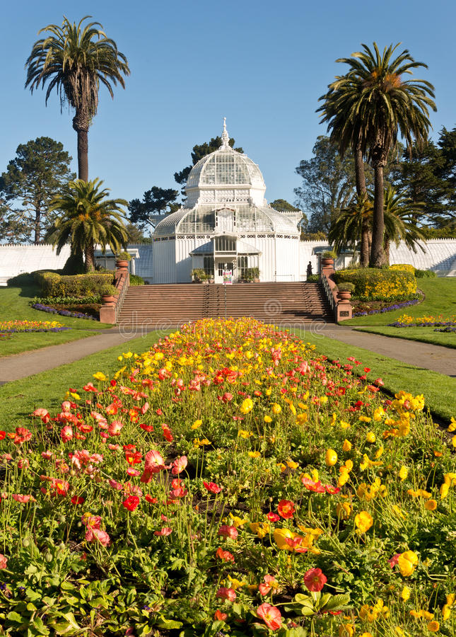 Консерватория Сан-Франциско Golden Gate Park цветков стоковая фотография