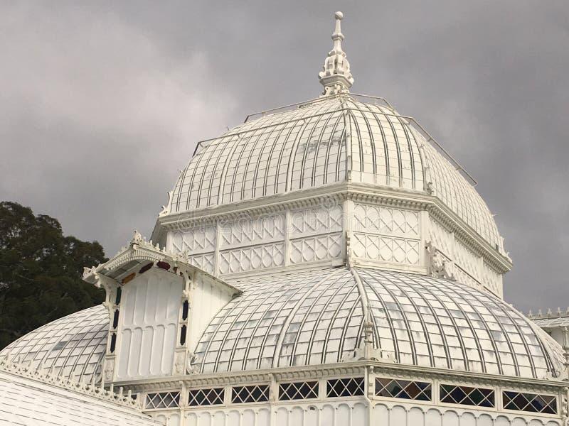 Консерватория цветков, Golden Gate Park, Сан-Франциско, 7 стоковое фото rf
