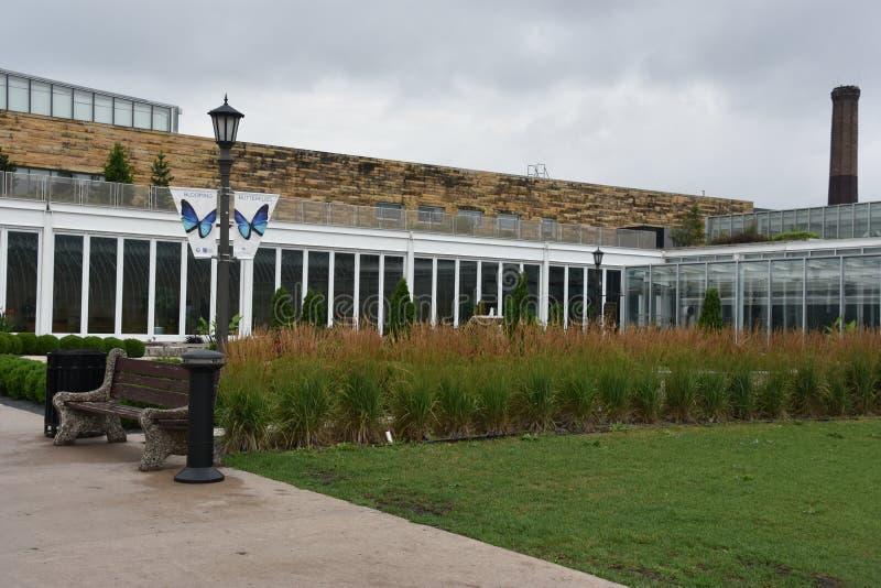Консерватория Marjorie McNeely в St Paul, Минесоте стоковые изображения