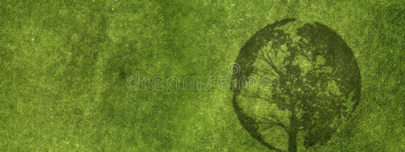 Конспект зеленой травы стоковые изображения rf