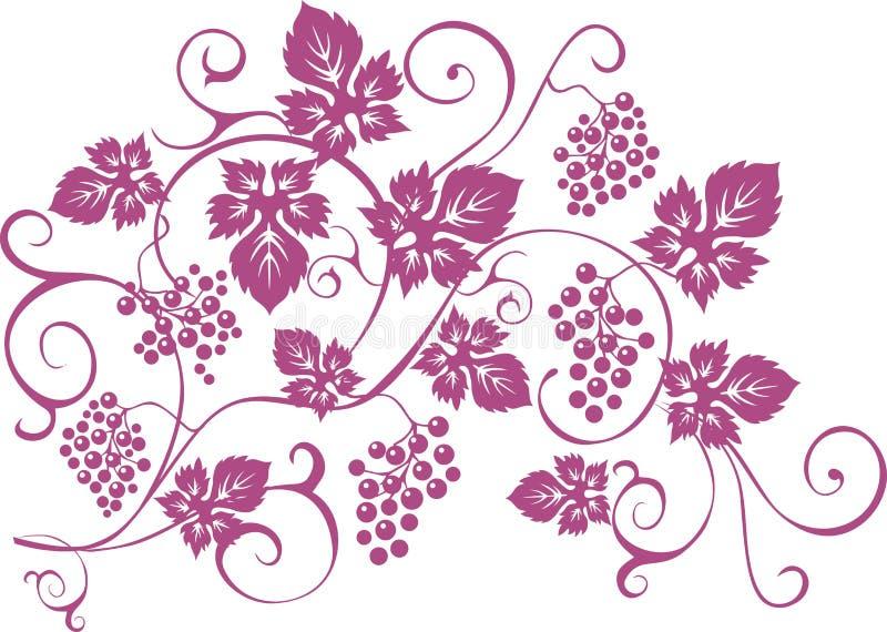Конструируйте элементы с связками винограда и лозы в винтажном styl бесплатная иллюстрация