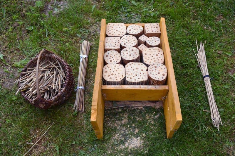 Конструкция и тростники гостиницы насекомого в корзине в саде стоковые фотографии rf