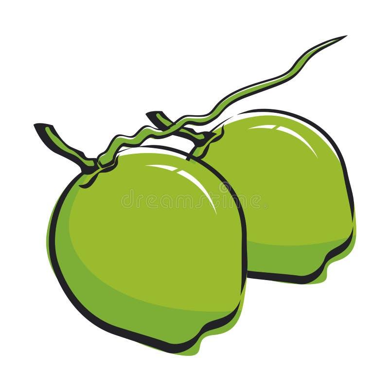 Конструкция кокоса бесплатная иллюстрация