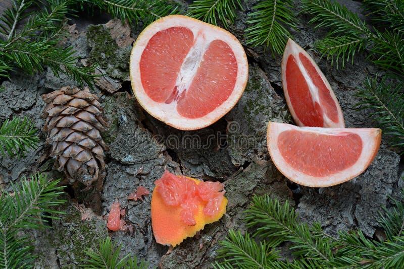 Конусы грейпфрута и сосны стоковые изображения