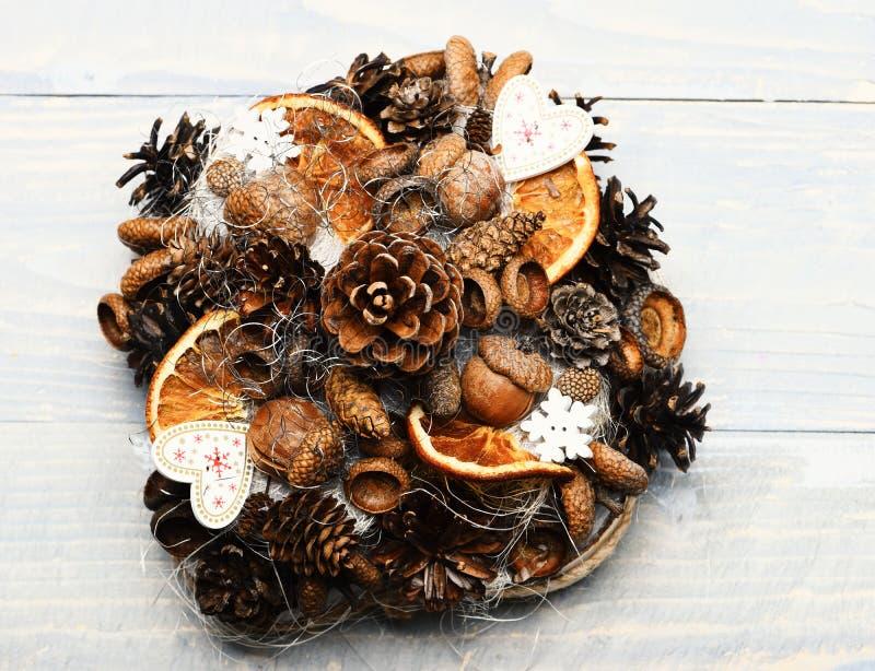 Конусы ели, гайки, жолуди и сухие цитрусы в составе стоковые фото