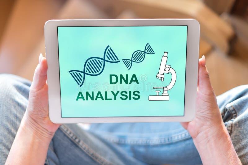 Концепция анализа ДНК на планшете стоковая фотография rf