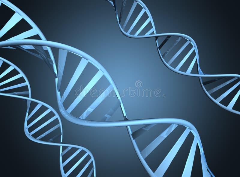 Концепция генетики показывая увеличиванные стренги дна двойной спирали иллюстрация штока