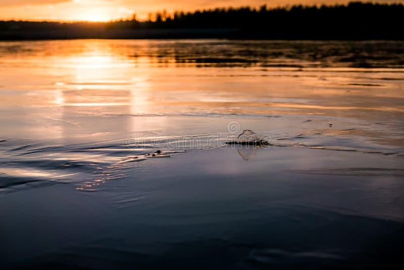 Концепция глобального потепления, тонкий плавя лед с теплым светом стоковые изображения