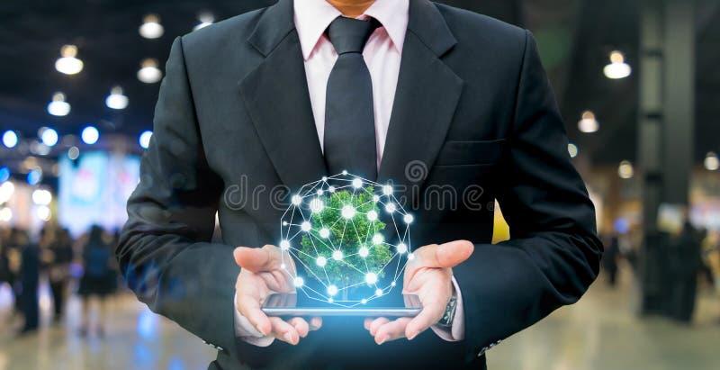 Концепция делового интереса роста дерева финансового стоковые изображения rf