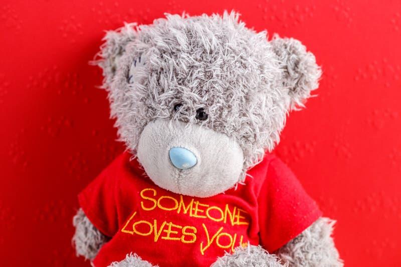 Концепция для любовных историй и на день Валентайн Части плюшевого мишки на красной предпосылке с сердцами стоковые изображения