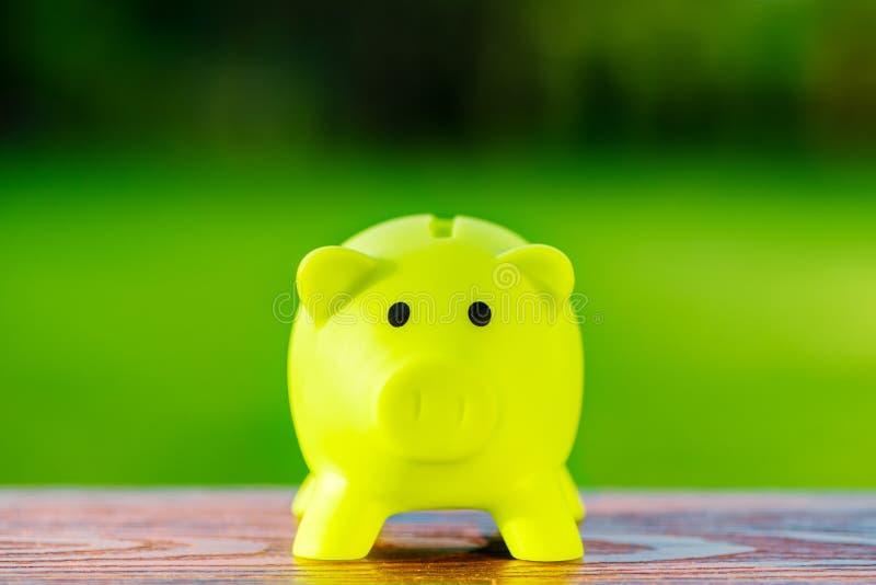 Концепция для сохранять, учитывая, банк зеленой копилки экологическая стоковая фотография rf