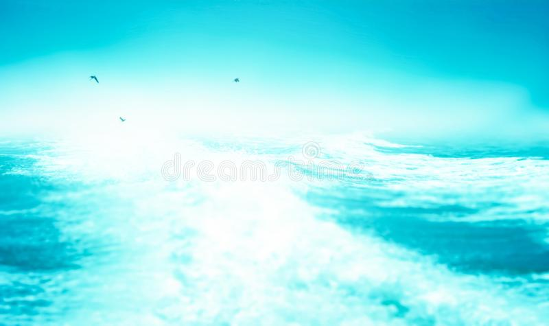 Концепция дня Мировых океанов: Защитите водные ресурсы стоковое фото