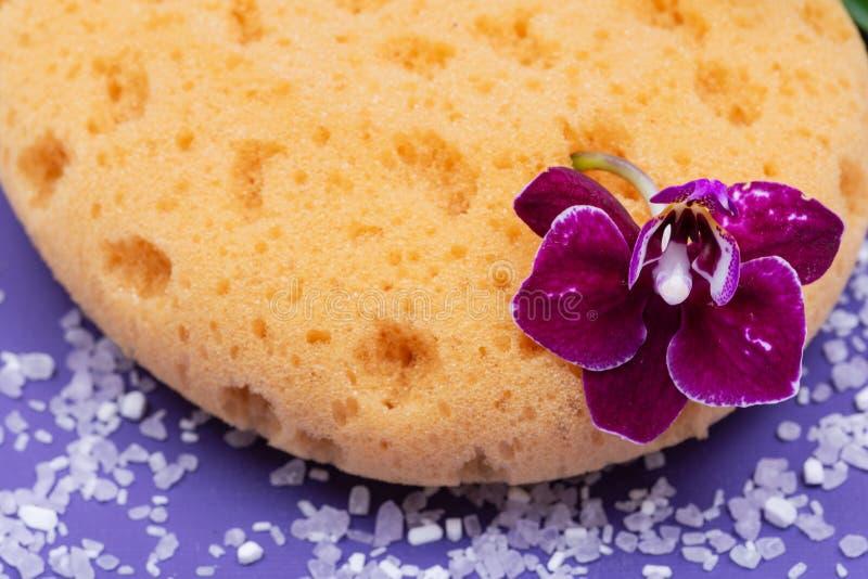 Концепция здоровья спа Естественные ванна пены & губка моря ливня, цветок орхидеи и соль Epsom лаванды на ярком пурпуре стоковые изображения rf