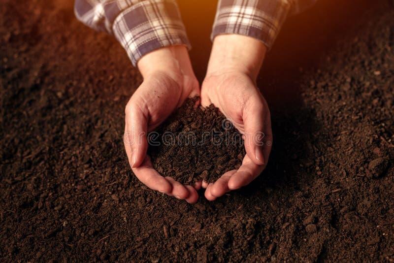 Концепция изобилия почвы стоковые фотографии rf